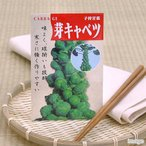 野菜の種 子持甘藍芽キャベツ 家庭菜園 関東当日便