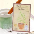 ハーブ HERB (ソレル) 品番:834 スイバ 酢い葉 家庭菜園 関東当日便