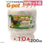 菌糸ビン G-pot スタウト 1200cc 10本 関東当日便