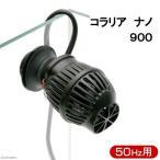 50Hz コラリア ナノ 900 50Hz(東日本用) サーキュレーター 海水魚 サンゴ 水流 関東当日便