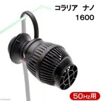 50Hz コラリア ナノ 1600 50Hz(東日本用) サーキュレーター 海水魚 サンゴ 水流 関東当日便