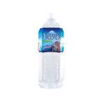 ペットの天然水 Vウォーター 2L 犬 ペットウォーター ドリンク 関東当日便