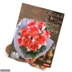 (観葉)チューリップ球根 花のある暮らし。人気上昇中品種シリーズ フォックストロット 10球詰(1袋)