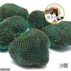 (水草)巻きたて ジャイアント南米ウィローモス 溶岩石ボール(無農薬)(3個) 北海道航空便要保温