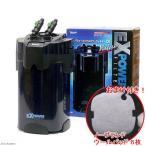 バリューエックスパワーフィルター VX−120 水槽用外部フィルター おまけ付き 関東当日便