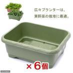 リッチェル 緑のやさいプランター 50型(グリーン) 6個売り 関東当日便