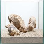 一点物 木化石レイアウトセット 30cm水槽用 896643