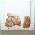 一点物 木化石レイアウトセット 30cm水槽用 896644