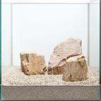 一点物 木化石レイアウトセット 30cm水槽用 896652