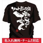 名入れ無料!背中に熱いメッセージ文字入りtシャツ。女子対応なのでチームtシャツや部活tシャツにオススメのソフトボールtシャツ 「翔けあがれ」
