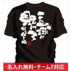 名入れ無料!背中に熱いメッセージ文字入りtシャツ。バレーボール女子やジュニアにオススメのチームtシャツ バレー「賭けろ」
