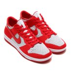 NIKE DUNK FLYKNIT (UNIVERSITY RED/WHITE-WOLF GREY) 17FA-S
