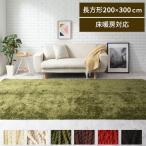 ラグマット おしゃれ 洗える シャギーラグ カーペット 床暖房 ホットカーペット対応 軽い 8畳 長方形 200×300cm