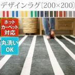 床暖房対応 ラグマット カーペット 絨毯 洗える オールシーズン ウォッシャブル センターラグ デザインラグ