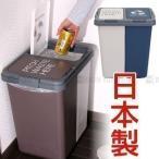 分別ダストボックス ダストボックス 屋外 おしゃれ ダストボックス 分別 キッチン リビング ゴミ箱 ゴミ箱 人気 日本製