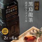 国産 黒烏龍茶 ペットボトル 2リットル 1ケース 送料無料(2L×6本 高ポリフェノール ウーロン茶)