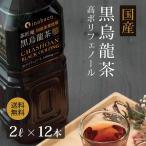 黒烏龍茶 静岡県産 ペットボトル 2リットル 2ケース 送料無料 2L×12本 高ポリフェノール ウーロン茶
