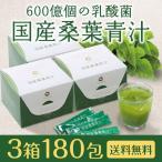 青汁 国産 桑葉青汁 3箱セット 送料無料 600億個の乳酸菌 お茶屋と製薬会社の共同開発 桑の葉 酵母 酵素