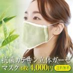 抗菌立体マスク 4枚セット カテキン 銀イオン Ag メール便送料無料 オーガニックコットンガーゼ 綿100% 今治製 洗濯可能 日本製 布マスク