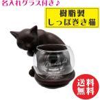 名入れ グラス付き 樹脂製しっぽ巻き猫 名入れグラス 名入れ プレゼント 名入れ ギフト ねこ 猫 ネコ 記念日 誕生日 送料無料