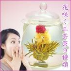 ショッピング茶 花咲く工芸茶9種類(各1個)/ギフト プレゼント 送料無料