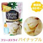 無添加 パイナップル 10g 離乳食 ベビー 赤ちゃん おやつ 子供 キッズ ドライフルーツ 砂糖不使用 無糖 ミライフルーツ フリーズドライ