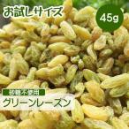 ドライフルーツ レーズン 45g ポイント消化 グリーンレーズン 砂糖不使用 無添加 ぶどう ブドウ 干しブドウ 無糖 小分け ギフト チャック付き お試しサイズ