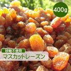 ドライフルーツ レーズン 400g マスカットレーズン 砂糖不使用 無添加 ぶどう ブドウ 干しブドウ 無糖 小分け ギフト チャック付き