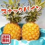 特価 西表島産スナックパイン2.4kgセット(3〜5玉)送料無料