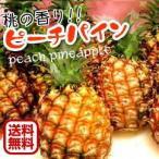 特価 西表島産ピーチパイン1.2kgセット(2〜3玉)送料無料