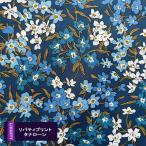 リバティプリント 21SS  シーブロッサムズ  ブルー系  SeaBlossoms タナローン 3631136-21A 国産 生地 布