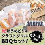 BBQセット 鶏肉 & クラフトグリル 【紀の国みかん鶏での代用出荷】