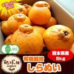 不知火 有機栽培 しらぬい ( デコポン と同等品種) 熊本県産 5kg しらぬひ 送料無料 化学肥料・除草剤・防腐剤不使用