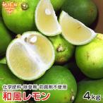 和風レモン 国産 化学肥料・農薬・防腐剤不使用 鹿児