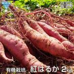 紅はるか 2kg 有機栽培 鹿児島県産 宮崎県産 土付き さつまいも 薩摩芋 サツマイモ からいも べにはるか 国産 焼き芋 無農薬 オーガニック