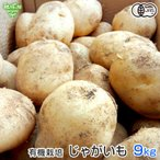 【送料無料】 有機栽培じゃがいも 鹿児島県産10kg 新じゃがいも 春じゃがいも
