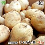 【送料無料】 有機栽培じゃがいも 鹿児島県産5kg 新じゃがいも 春じゃがいも