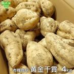 黄金千貫 4kg 有機栽培 鹿児島県産 土付き さつまいも 薩摩芋 サツマイモ からいも こがねせんがん 国産 無農薬 organic オーガニック