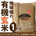 地球畑の有機栽培米(玄米) 1kg お試し品 メール便 2016 28年 送料無料
