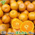 ポンカン 有機栽培 18kg 鹿児島県産 有機JAS ぽんかん 柑橘 みかん オレンジ くだもの サイズ混合 業務用 まとめ買い オーガニック