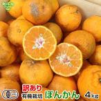 ポンカン 有機栽培 2kg 鹿児島県産 有機JAS ぽんかん 柑橘 みかん オレンジ くだもの サイズ混合 自宅用 オーガニック organic