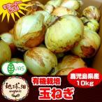 【送料無料】 有機栽培 新玉ねぎ 10kg 鹿児島県産 タマネギ 玉葱 たまねぎ