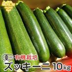 ズッキーニ 10kg 有機栽培 鹿児島県産 熊本県産 宮崎県産 JAS認証 大きさおまかせ ずっきーに ラタトゥイユ 無農薬