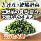 乾燥野菜 ほうれん草 国産野菜  保存野菜