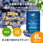 ブルーベリー100%ジュース(200ml × 6本セット) ブルーベリー ジュース 健康食品 果汁100% 砂糖や保存料不使用 無添加 無農薬 更年期 美容 健康