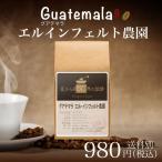 コーヒー シングルオリジン サードウェーブ グアテマラ エルインフェルト農園180g