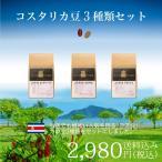コーヒー シングルオリジン サードウェーブ  コスタリカ豆5種類セット