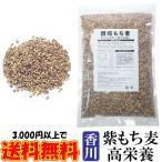 讃岐もち麦 ダイシモチ 1kg 紫もち麦ごはん 国産 お試し 1キロ