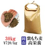 もち麦 国産 1kg 画像
