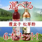 2種から好きな6本選べる農本ノンボン至高の健康ドリンクの決定版360ml 松芽酢(マツメス)、覆盆子(ポップンジャ)